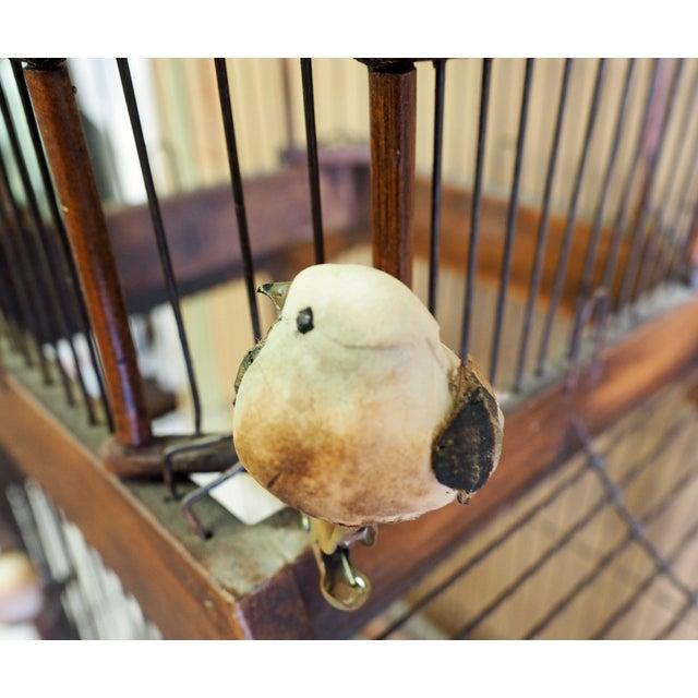 Antique 19th Century Victorian Cupola Bird Cage - Image 5 of 7