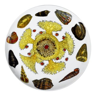 Piero Fornasetti Conchiglie Pattern Porcelain Plate, #4 in Series