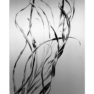 """Palm Frond,"" Black & White Photograph by C. Plaza"