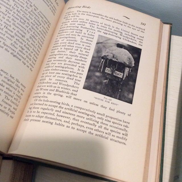 Image of Vintage Green Book Stack - Set of 4