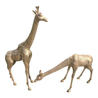 "Tall Brass Giraffes (33.5"") - a Pair"
