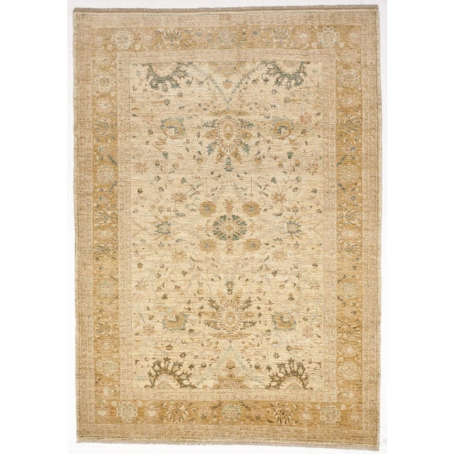 Transitional Hand-Knotted Pakistan Rug