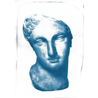 Cyanotype Print, Greek Woman Bust Sculpture