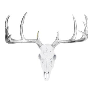 White + Metallic Silver Antlers Large Deer Skull by Wall Charmers