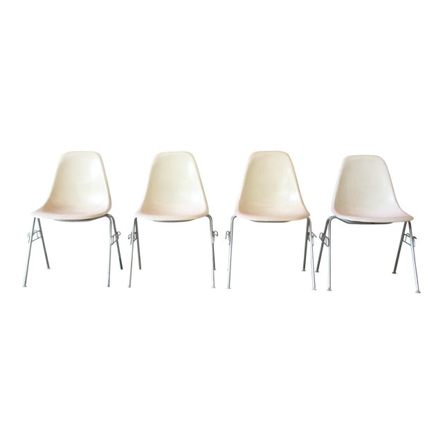Charles Eames for Herman Miller DSS Stacking Chairs in Parchment - Set of 4 - Image 1 of 9