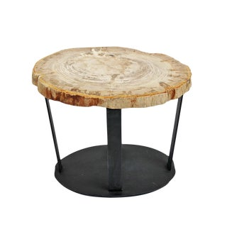 Petrified Wood Slice & Iron Side Table