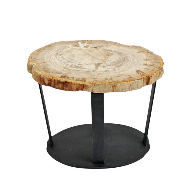 Wood Slice Accent Table: Petrified Wood Slice & Iron Side Table