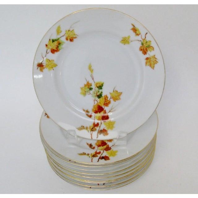 Japanese Porcelain Salad Plates - Set of 10 - Image 2 of 4