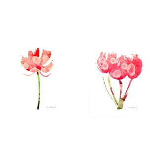 Premium Giclee Prints of Botanical Grouping Set of 2