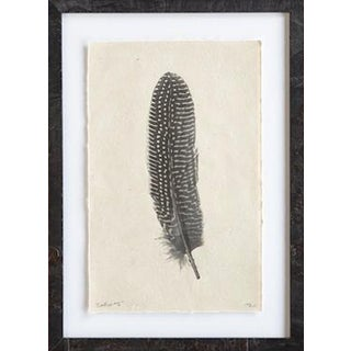 Giclée Print Handmade in Nepal, Feather Study - #5