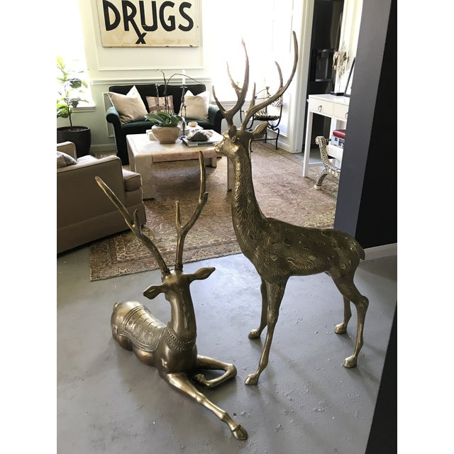 Life-Sized Brass Deer Statues - A Pair - Image 6 of 11