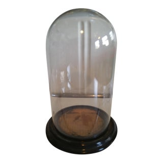 Hand Blown Victorian Dome