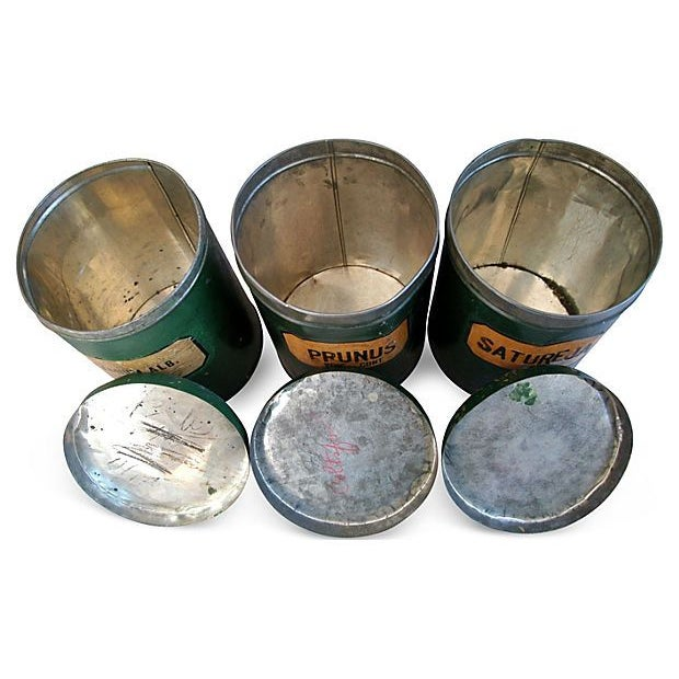 Image of Antique Apothecary Herbalist Tins - Set of 3