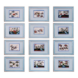 Circa 1840-60 China Trade Pith Paper Paintings of Birds - Set of 12