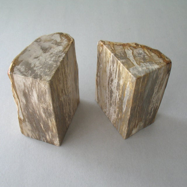 Petrified Wood Bookends - Pair - Image 6 of 9