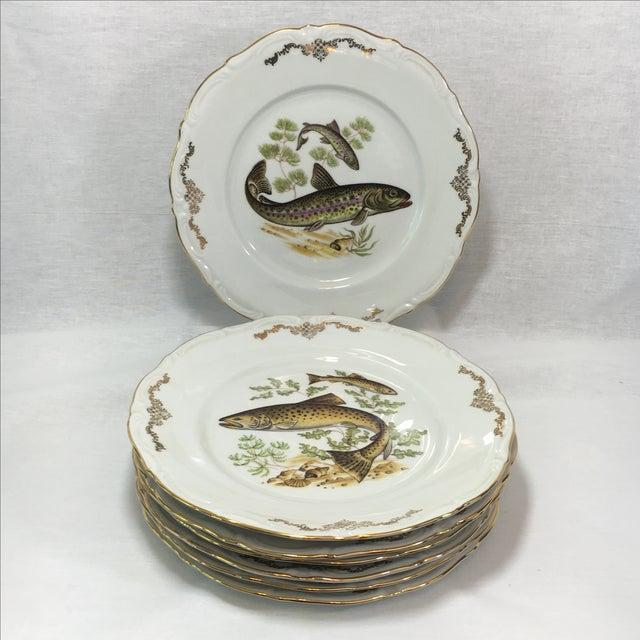 Bavarian Winterling China Fish Pattern Plates - 7 - Image 2 of 7
