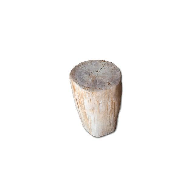Petrified Wood Stool - Image 4 of 4