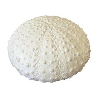 White Ceramic Sea Urchin