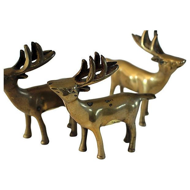 Brass Deer Statues - Set of 3 - Image 2 of 3