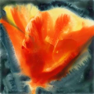 Golden Poppy II Original Painting