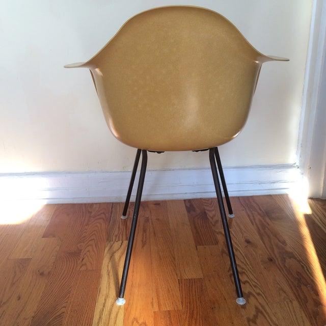 Vintage Herman Miller Eames Fiberglass Armchair - Image 5 of 8
