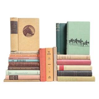 Horses & Horsemanship Mixed Books - Set of 20