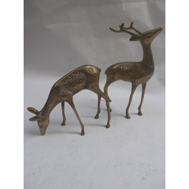 Vintage Brass Deer - A Pair - Image 3 of 5