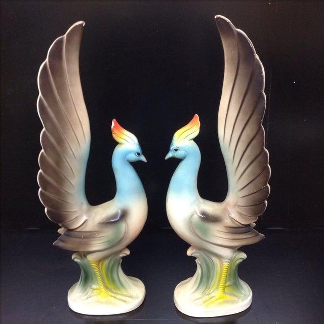 Image of Mid-Century Birds of Paradise
