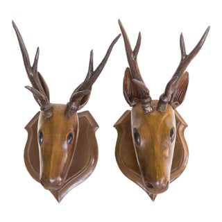 Anglo-Indian Wood Deer Heads