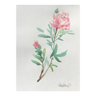 Soft Rose Watercolor Painting