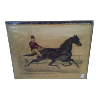"""""""The Grand Young Trotter"""", Original Lithograph"""