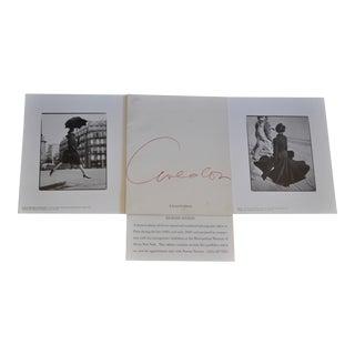 Richard Avedon Limited Edition 11 Exhibition Presentation Portfolio