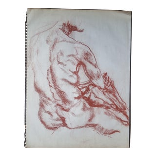 Drawing - A Gentleman's Back