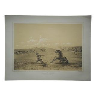 """Wild Horse"" Ltd Ed Serigraph-Americana"