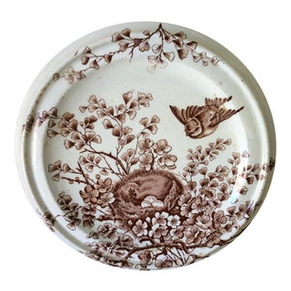 Shabby Chic Brown & White Birds Nest Cookie Plate