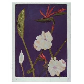 White Amaryllis on Purple by Sylvia Roth
