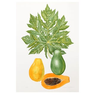 Marion Sheehan - Papaya Lithograph
