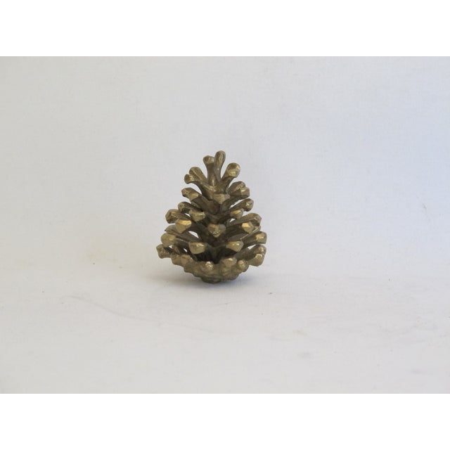 Image of Brass Pinecone