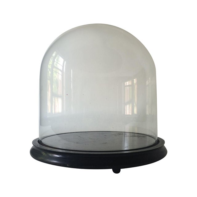 Victorian Cloche Dome with Stand - Image 1 of 8