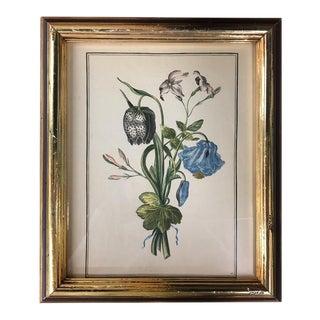 Vintage Framed Floral Sprays Art Print