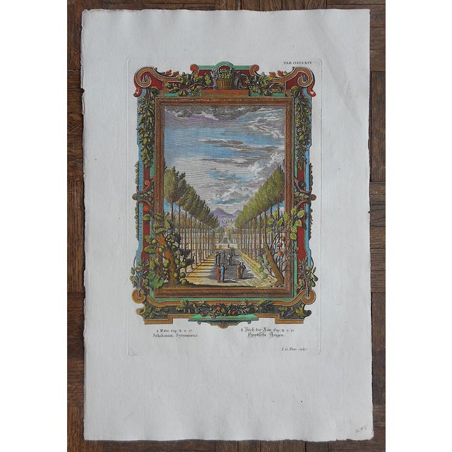Antique Arbor of Trees Folio Size Engraving - Image 2 of 3