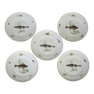 Italian Richard Ginori Fish Plates - Set of 5