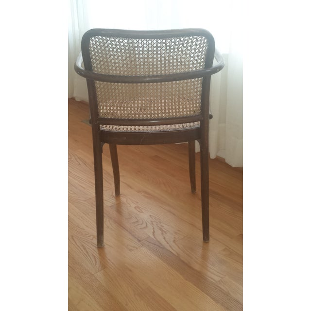 Image of Vintage Stendig Thonet Bentwood Cane Chairs - Set of 4