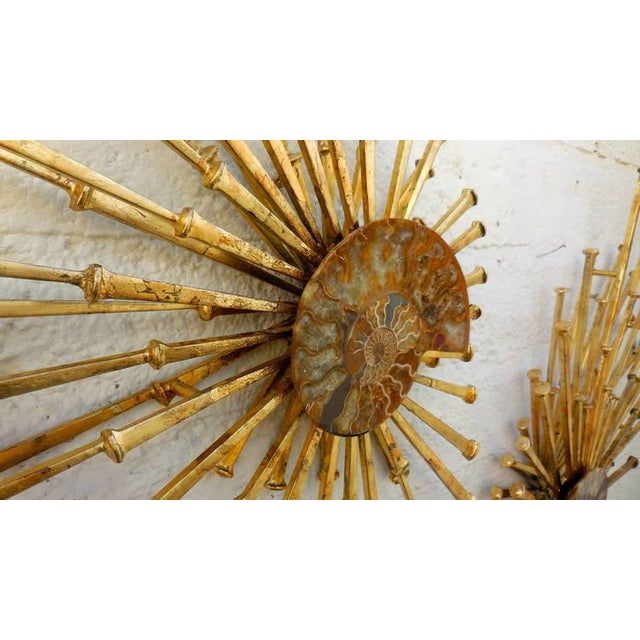 Image of Del Williams Nautilus Shells Wall Sculpture