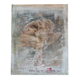 White Rose #137 Framed Print