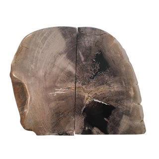 Petrified Wood Book Ends - Pair