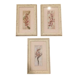 Flower Prints Framed in Distressed Wood - Set of 3