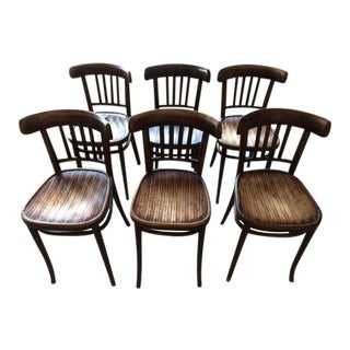 Vintage Thonet Style Bentwood Chairs - Set of 6
