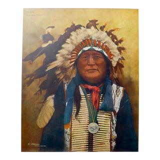 Sioux Indian Chief Print