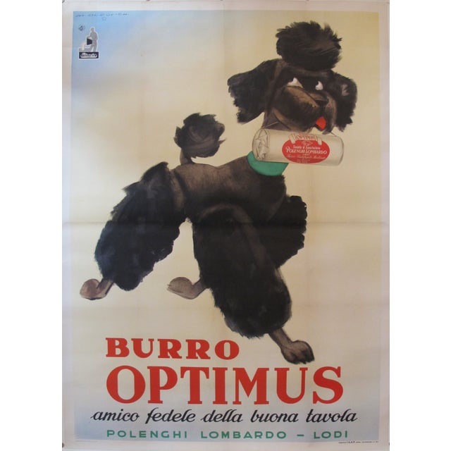 Vintage Italian Poodle Poster - Image 1 of 4